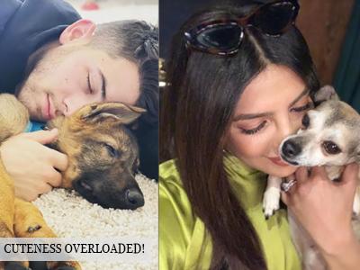 Priyanka Chopra's gift to Nick Jonas is best thing ever!