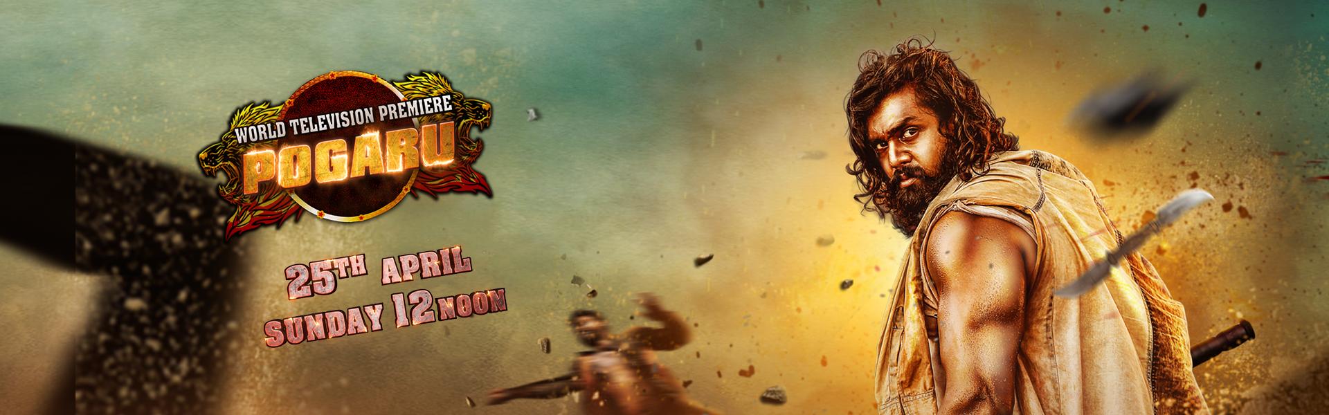 Pogaru | World Television Premiere | 25th April @12Noon | Colors Cineplex