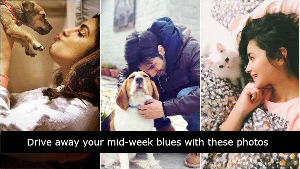 Here are the photos of Bollywood celebrities with their super adorable pets